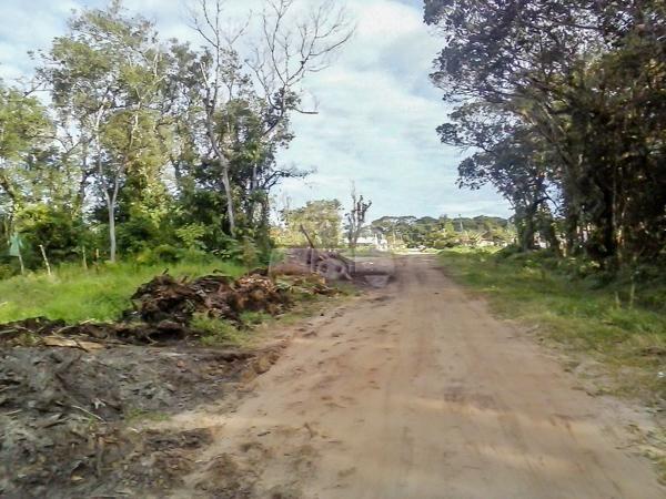 Terreno à venda em Cohapar, Guaratuba cod:125331 - Foto 6