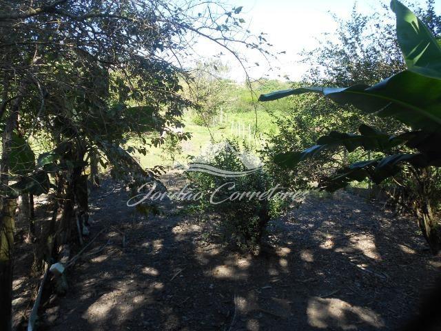Jordão Corretores - Sítio 100% plano em agrobrasil - Foto 8