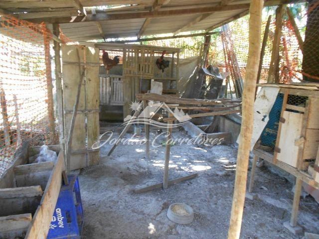 Jordão Corretores - Sítio 100% plano em agrobrasil - Foto 16