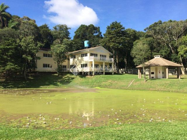 Apartamento para alugar com 2 dormitórios em São luiz, Canela cod:299218 - Foto 20