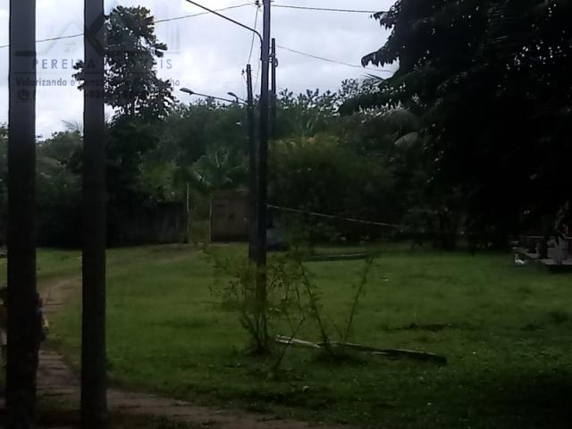 197 - Belíssimo sitio Situado No Jardim Neópolis Venda R$200.000,00 - Foto 3
