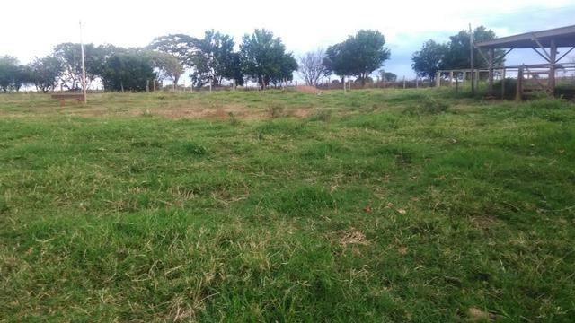 Fazenda terra de cultura município Tupaciguara - Foto 5