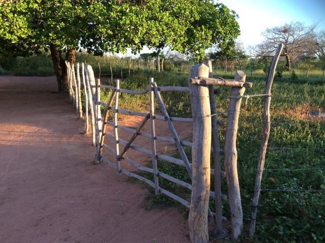 Fazenda em São João do Jaguaribe - Foto 2