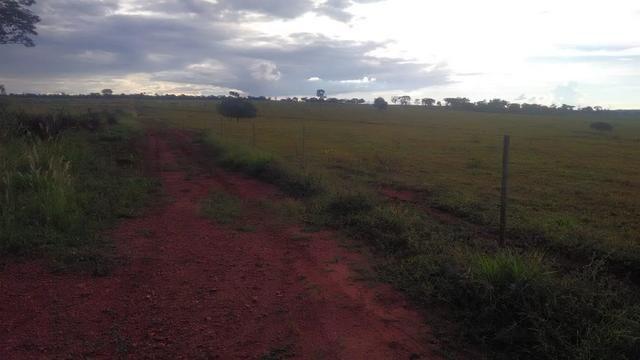 Fazenda terra de cultura município Tupaciguara - Foto 3