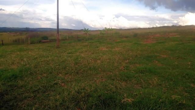 Fazenda terra de cultura município Tupaciguara - Foto 8