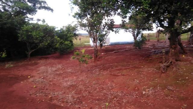 Fazenda terra de cultura município Tupaciguara - Foto 10