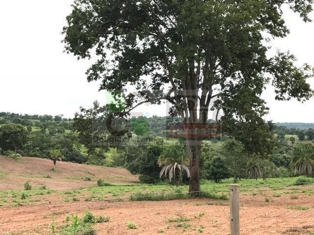 220 Alq. (Plana + Asfalto + Rio). 70 km de Goiânia - Foto 15