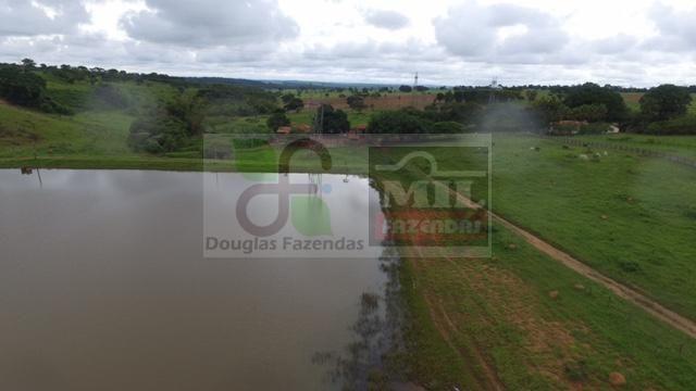 220 Alq. (Plana + Asfalto + Rio). 70 km de Goiânia - Foto 3