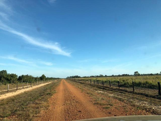 Fazenda Boa de Terra em Cocalinho - MT - Foto 3