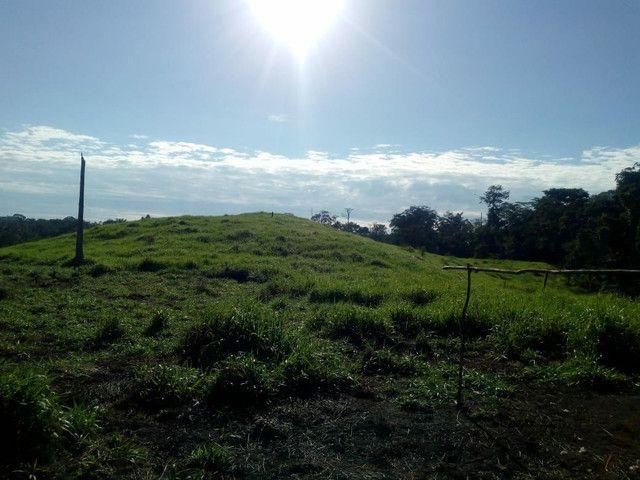 Fazenda  - Foto 13
