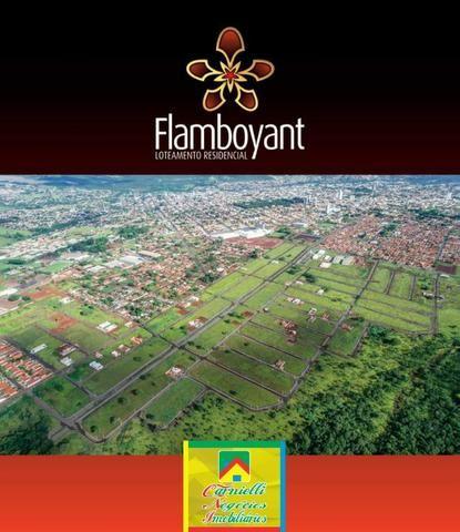 Residencial Flamboyant - Entrada Facilitada - Terrenos Financiados - Jataí-GO