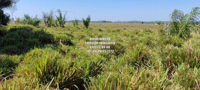 Fazenda em Machadinho - Foto 8