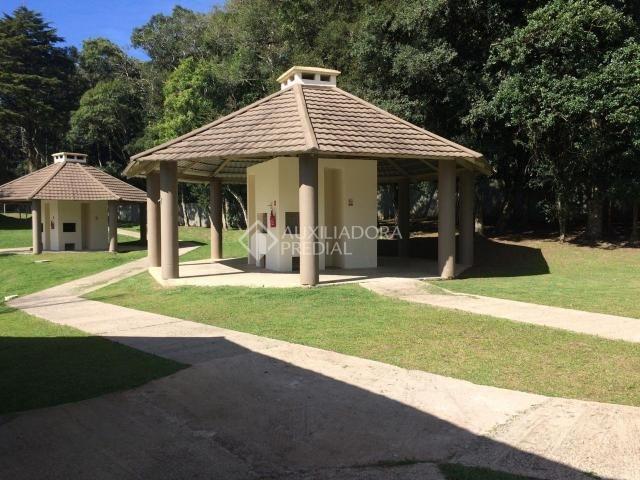 Apartamento para alugar com 2 dormitórios em São luiz, Canela cod:299218 - Foto 18
