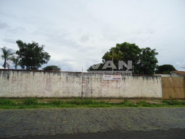 Terreno para alugar com 0 dormitórios em Presidente roosevelt, Uberlândia cod:303091
