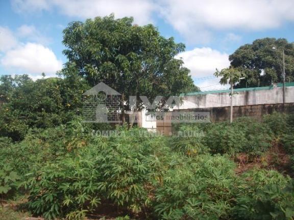 Terreno para alugar com 0 dormitórios em Presidente roosevelt, Uberlândia cod:303091 - Foto 5