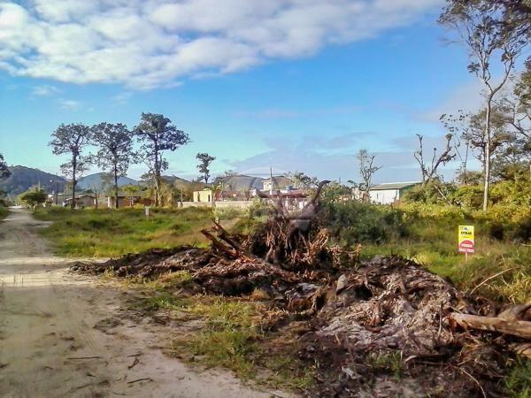 Terreno à venda em Cohapar, Guaratuba cod:125331 - Foto 7