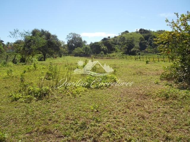 Jordão Corretores - Sítio 100% plano em agrobrasil - Foto 11