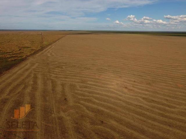 Fazenda à venda, 12650000 m² por r$ 16.000.000 - vila rica - barreiras/ba - Foto 3