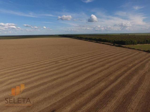 Fazenda à venda, 12650000 m² por r$ 16.000.000 - vila rica - barreiras/ba