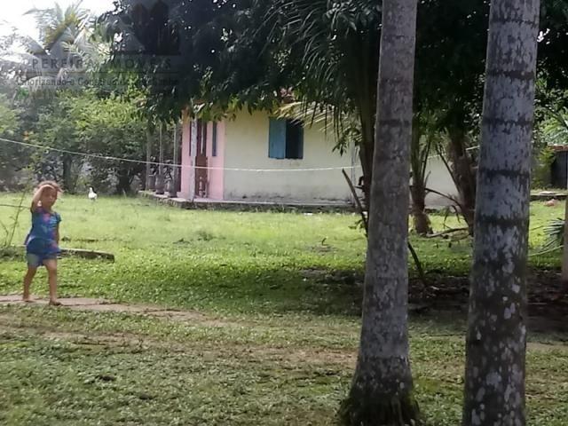 197 - Belíssimo sitio Situado No Jardim Neópolis Venda R$200.000,00 - Foto 9