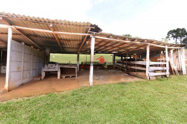 8287 | chácara à venda em guarapuava - Foto 4