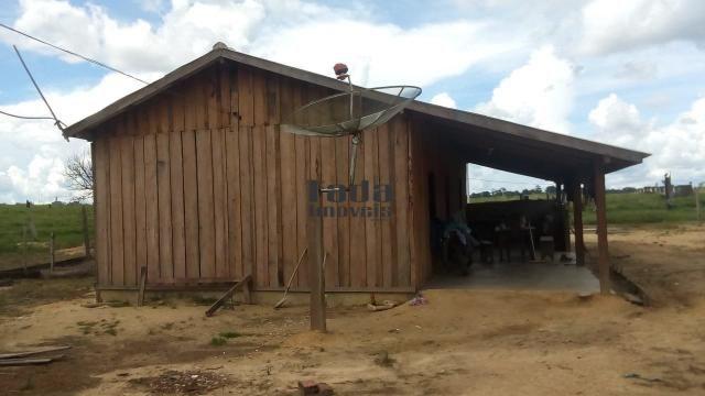 Chácara à venda em Nova mamoré, Rondônia cod:118 - Foto 3