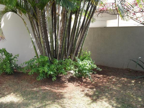 Casa para alugar com 4 dormitórios em Jardim paraíso, São carlos cod:2881 - Foto 20