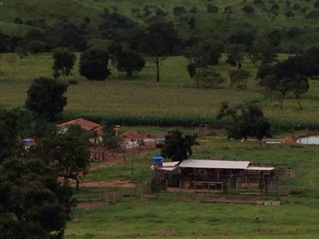 10 Alq. em Caldas Novas-GO. (Margem Rio Peixe) - Foto 4