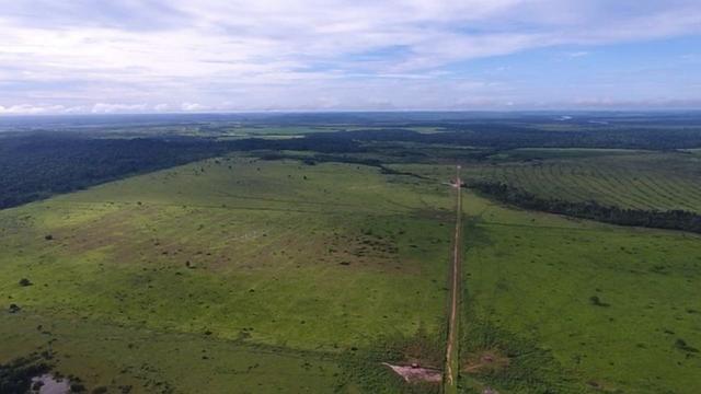 6.100 Há c/ Lavoura em Nova Canna do Norte-MT - Foto 9
