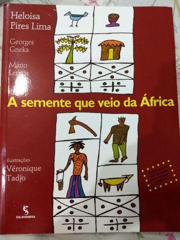 Livro A semente que veio da África