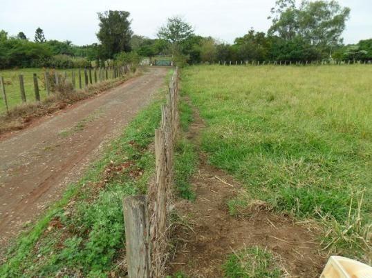 Terreno plano com 2 alqueires em Cesário Lange à 3 Km do asfalto. TER 104