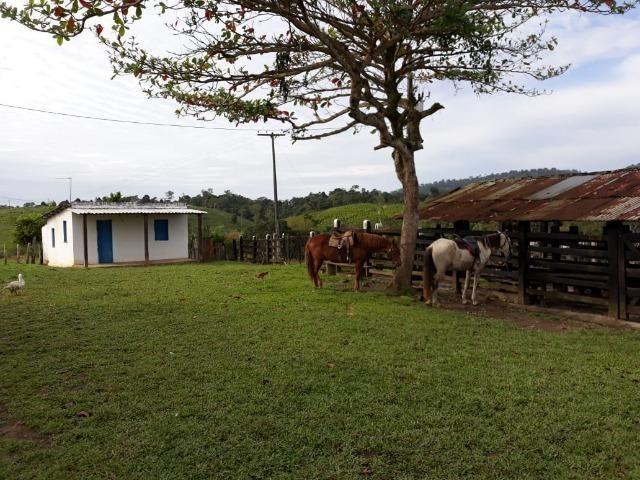 Fazenda em Camacã