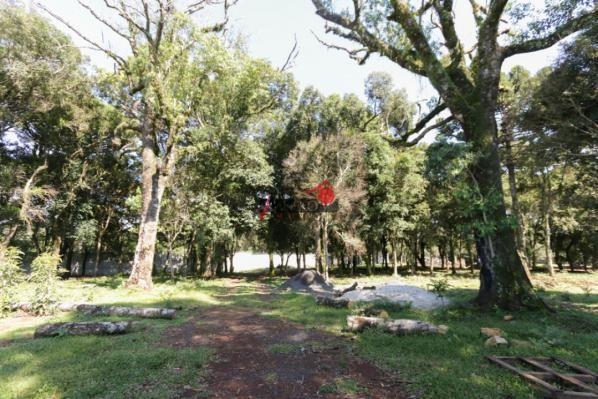 8287 | terreno à venda em industrial, guarapuava - Foto 5