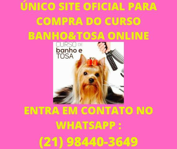 Curso Banho&Tosa Online - Foto 2