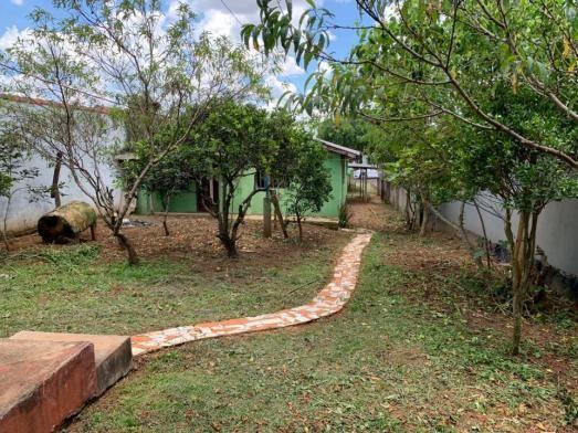 8287   terreno à venda em santa cruz, guarapuava - Foto 6