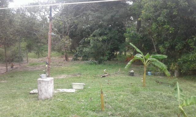 Chacara - Foto 6