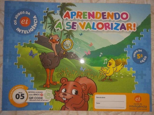 Kit 9 Livros Ei Escola Da Inteligência 2° Período 4 E 5 Anos - Foto 2