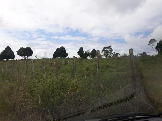 Fazenda de Pecuária - Foto 8