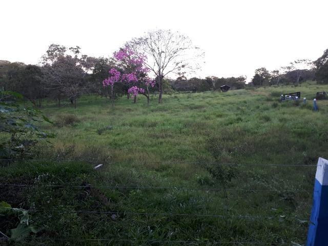 Fazenda c/ 508he c/ 330he Formados, 28km de Alto Araguaia-MT - Foto 3
