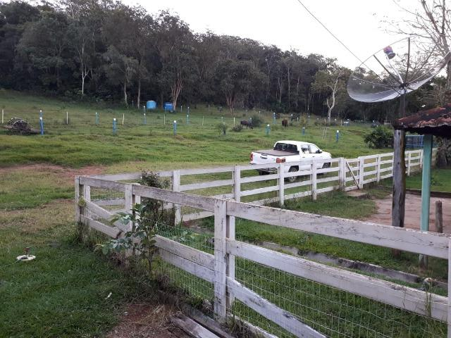 Fazenda c/ 508he c/ 330he Formados, 28km de Alto Araguaia-MT - Foto 7