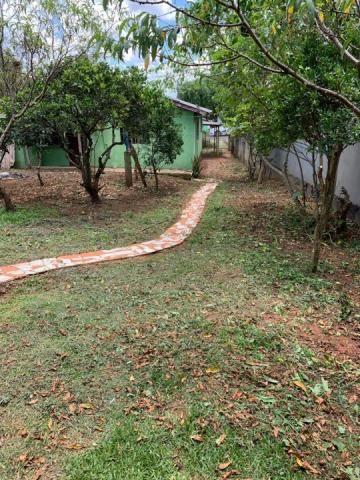 8287   terreno à venda em santa cruz, guarapuava - Foto 5