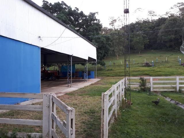 Fazenda c/ 508he c/ 330he Formados, 28km de Alto Araguaia-MT - Foto 8