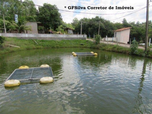Pesqueiro 05 Lagos pronto para funcionamento excelente local Ref. 180 Silva Corretor - Foto 11