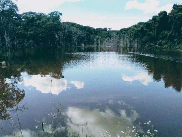 Sítio para confinamento de boi e lazer na região de São João da Mata