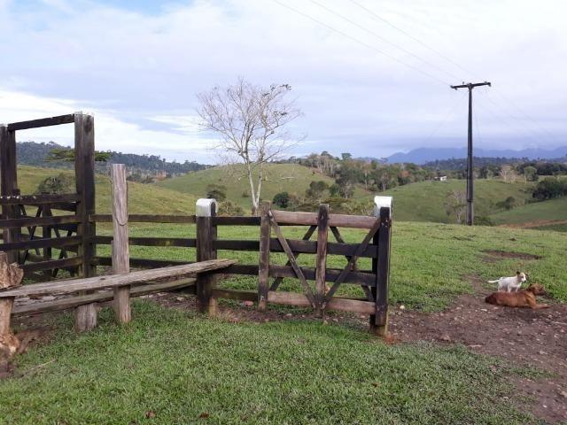 Fazenda de Pecuária - Foto 5