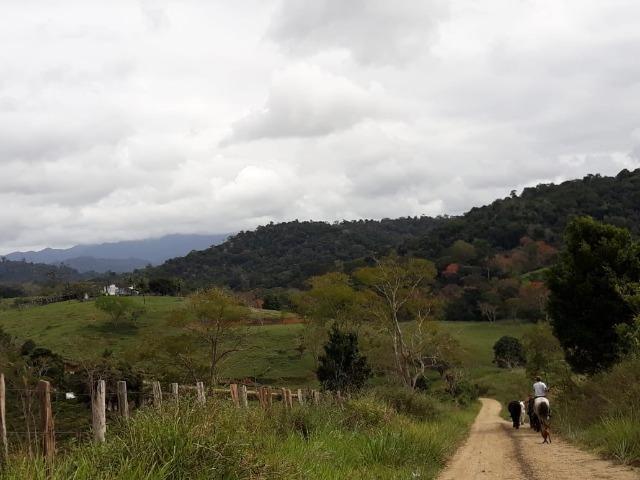 Fazenda de Pecuária - Foto 14