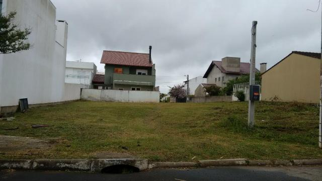 Terreno residencial à venda, Protásio Alves, Porto Alegre. - Foto 2