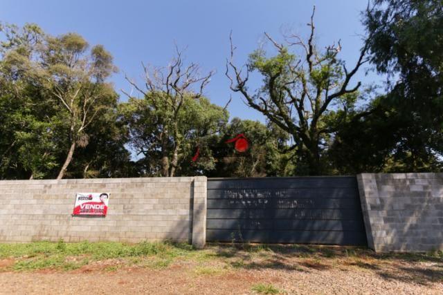 8287 | terreno à venda em industrial, guarapuava