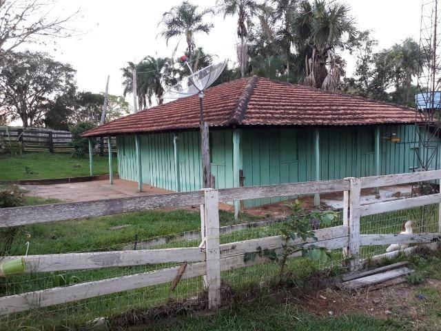 Fazenda c/ 508he c/ 330he Formados, 28km de Alto Araguaia-MT - Foto 13