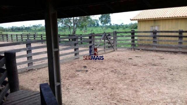 Fazenda à venda, por R$ 14.000.000 - Zona Rural - Cacoal/RO - Foto 6